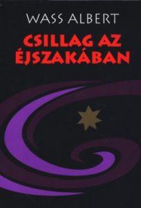 Csillag az éjszakában (puhatáblás,Mentor kiadó)