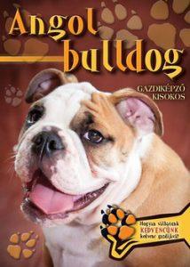 Angol bulldog - Gazdiképző kisokos