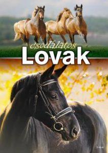 Csodálatos lovak