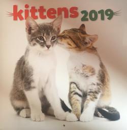 Falinaptár (lemez) - Kittens 2019