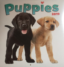 Falinaptár (lemez) - Puppies 2019