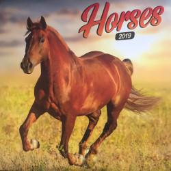 Horses lemeznaptár 2019