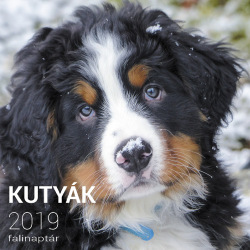 Kutyák 2019 falinaptár