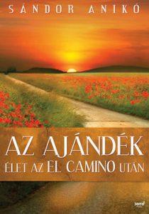 Az ajándék - Élet az El Camino után