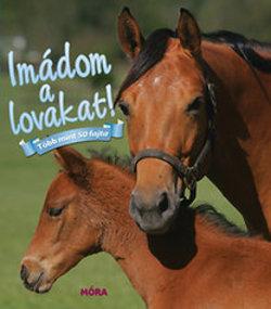Imádom a lovakat! Több mint 50 fajta