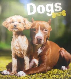 Dogs falinaptár 2019