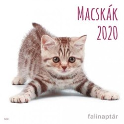 Macskák naptár 2020