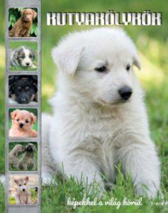 Kutyakölykök - Képekkel a világ körül