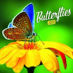 Butterflies lemeznaptár 2020