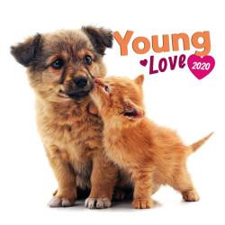 Young Love lemeznaptár 2020